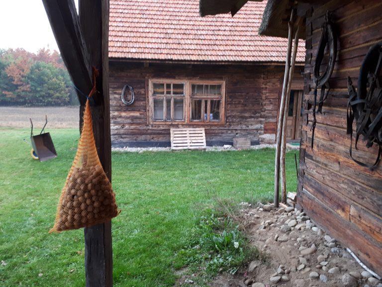 דרום מערב פולין שמורת באביה ג'ורה