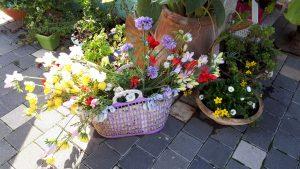 מארג כפר ורדים, סיור בלוגריות