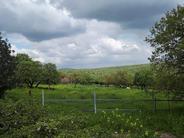 נוף בעמק יזרעאל