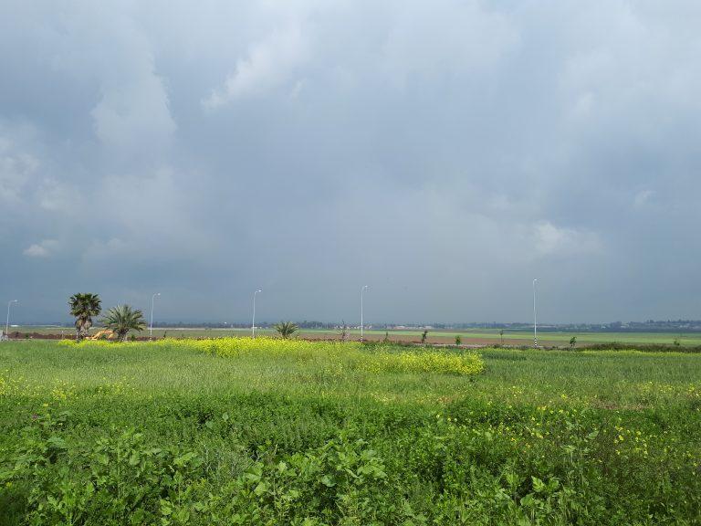 נוף עמק יזרעאל