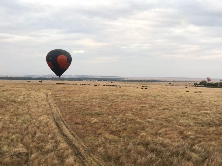 כדורים פורחים בקניה