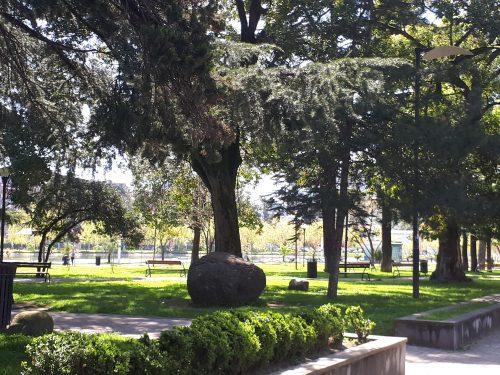 פארק בבטומי
