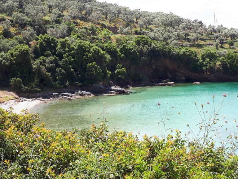 חצי האי פיליון