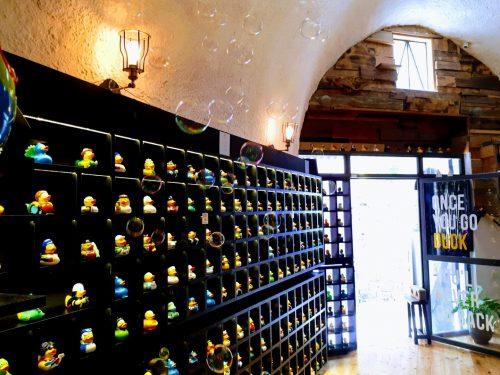 חנות ברווזים עכו