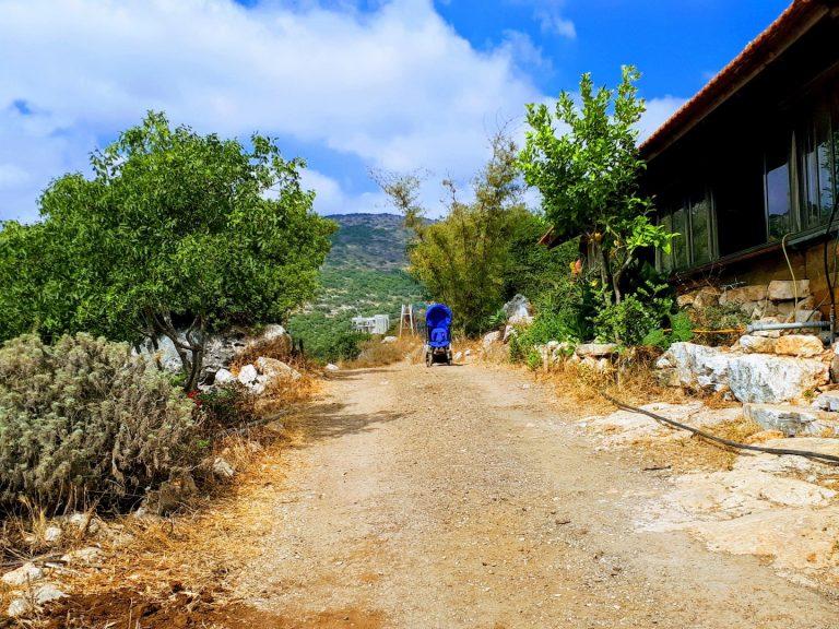כפר אקולוגי בגליל המערבי אדמה