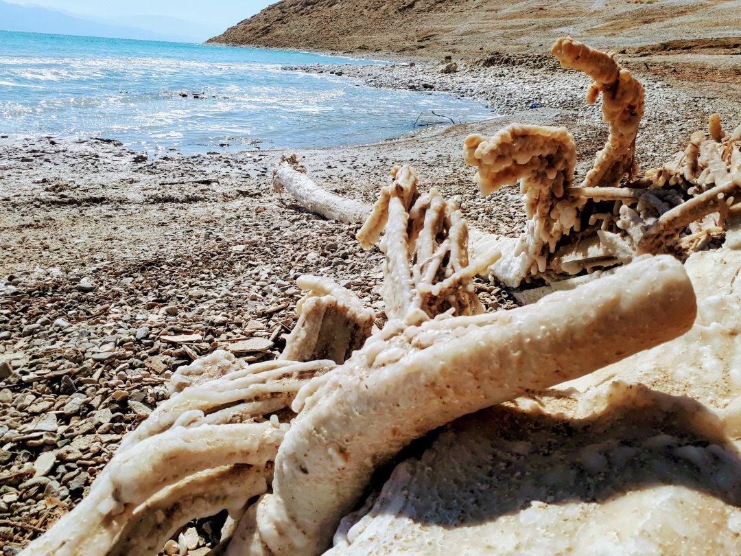 מעינות חמים בים המלח
