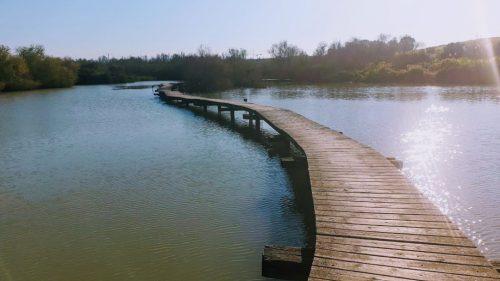 נחל נעמן - גשר בשמורת טבע עין אפק