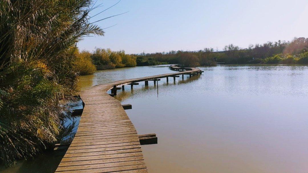 נחל נעמן - הגשר הצף בשמורת טבע עין אפק