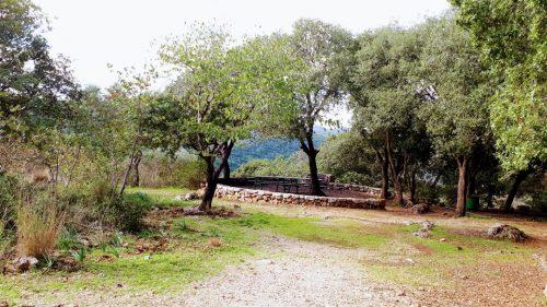 חניון גורן