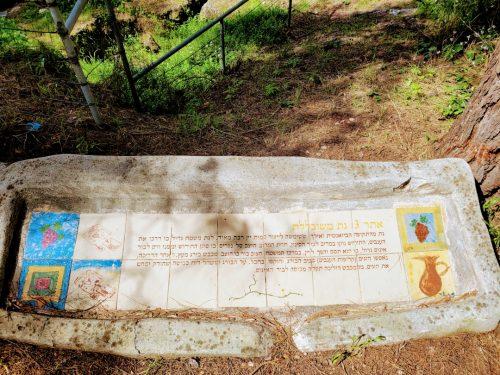 מגדל העמק - הפארק הארכיאולוגי
