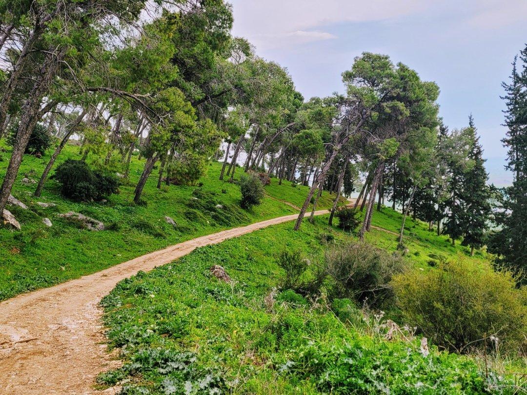 טיול בעמק יזרעאל