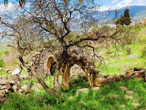טיול בגולן ובגליל העליון