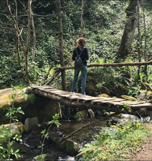 שמורת הטבע מיטרלה גאורגיה