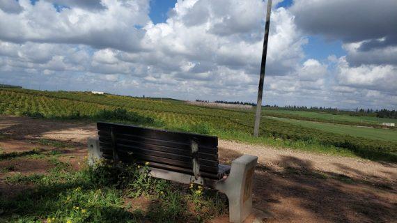 המלצות של מקומית: כפר סבא על המפה
